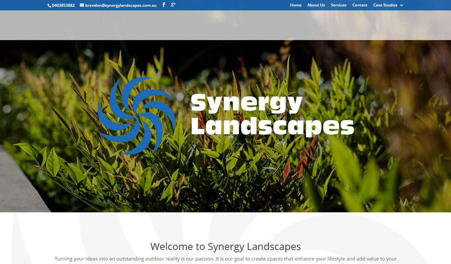 Synergy Landscape Website Case Study